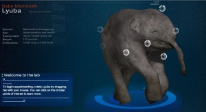 Baby Mammoth Interactive - Click here to try